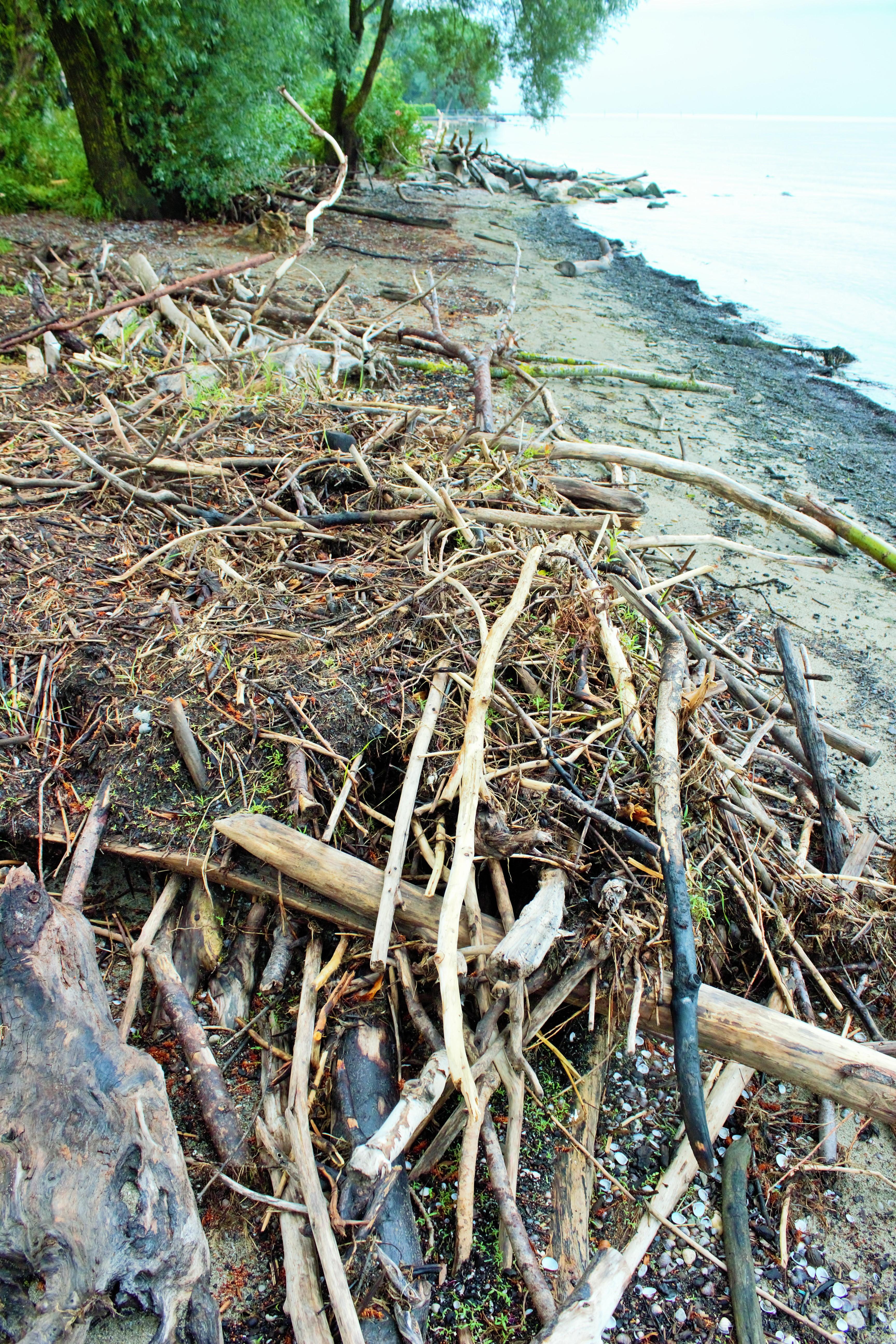 Geschwindigkeit datieren langen Strand ny
